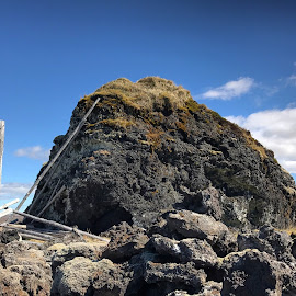 Lavafield by Bjarklind Þór - Instagram & Mobile Instagram ( iceland )