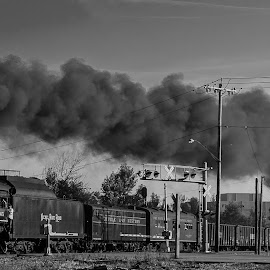 Next stop your town by Michael Wolfe - Transportation Trains ( steam engine, railroad tracks, nickel plate rail road, steam train, railroad, train, passenger cars, smoke, steam )