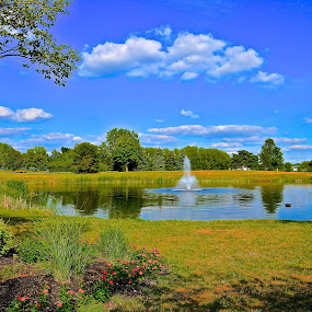 Fountain Pond by Chris Young - Landscapes Waterscapes ( water, clouds, sky, grass, blue, green, trees )