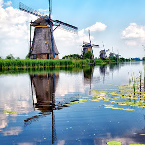 Kinderdyk Summer's by Colin Dixon - Landscapes Waterscapes ( clouds, sky, kinderdyk, holland, reflections, windmills, netherlands )