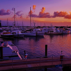 Stuart Marina Scene 2016 by Matthew Beziat - Transportation Boats ( sunshine state, august 2016, treasure coast, 2016, stuart marina, florida sunsets, stuart florida, boating, stuart, martin county, summer 2016, downtown stuart, sunsets, august, florida boating, florida boats, saint lucie river )
