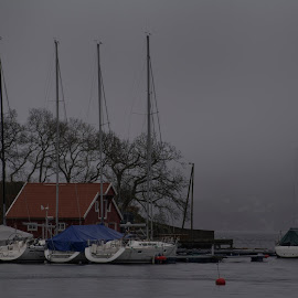 Waiting for the Summer by Olav Aga - Transportation Boats ( waiting, sea, mildevågen, spring, sail boat,  )