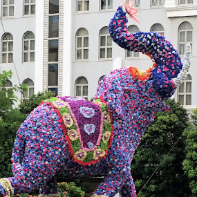 Radiant Elephant by Dennis  Ng - Artistic Objects Business Objects (  )