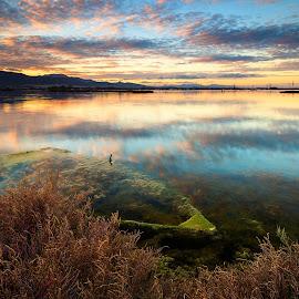 by Daniele Dessì - Transportation Boats ( colors, sunset, reflections, boat, landscape )