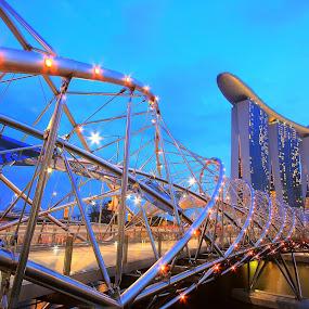 The DNA Bridge by Alit  Apriyana - Buildings & Architecture Bridges & Suspended Structures