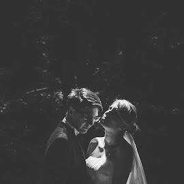 Shadow by Stefan Dimoiu - Wedding Bride & Groom ( shadow, forest, bride, light, groom )