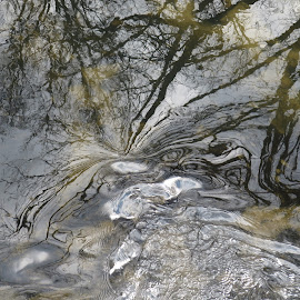Swirls and Reflections in the Water by Marcia Taylor - Novices Only Landscapes (  )