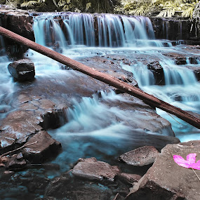 Waterfall(Infrared) by Fairuzee Ramlee - Landscapes Forests ( water, nature, infrared, waterfall, landscape )