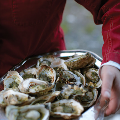 Grilled Oysters with Snail Butter