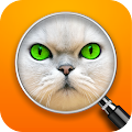 Game Guess the Pic! Close up Photos APK for Windows Phone