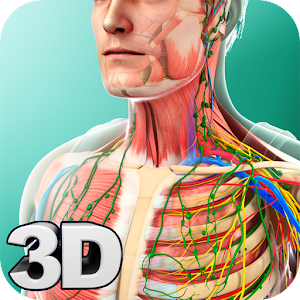 Human Anatomy For PC / Windows 7/8/10 / Mac – Free Download
