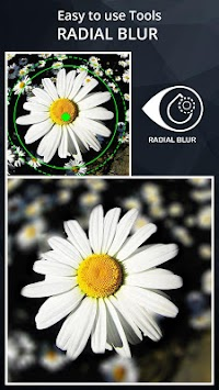DSLR Camera Blur Effects APK screenshot thumbnail 16