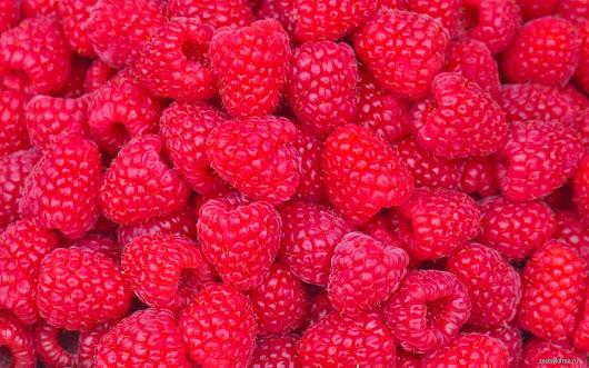 еда малина ягоды  № 2884548 бесплатно