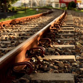 by Sylvia Dianita - Transportation Railway Tracks