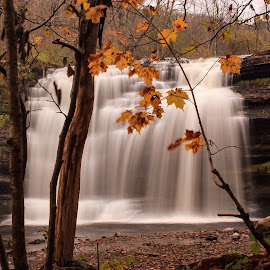 Pixley Falls this Autumn in NY  by Susan Campbell - Landscapes Waterscapes