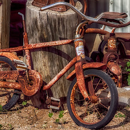 0684-TB-0211-02-16 by Fred Herring - Transportation Bicycles