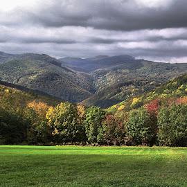 The Bükk montains by Jenő Murányi - Landscapes Mountains & Hills ( hills, autumn, sunlight )