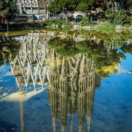 Sagrada Familia by Nikolas Ananggadipa - City,  Street & Park  City Parks ( water, ponds, reflection, building, europe, reflections, cityscape, barcelona, pond, spain, city )