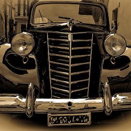 Fiat by Roberta Sala - Transportation Automobiles ( car, italian, automobile, transportation, italy, antique, black )