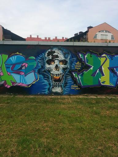 Skull - Street art Nowy Sącz