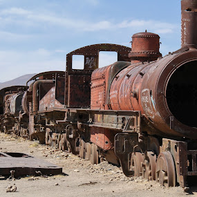 Where Trains Go To Die by Leigh Thomson - Transportation Trains ( atacama, desert, engine, tourism, transportation, travel, graveyard, landmark, south america, train, bolivia, rust, uyuni )