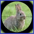 APK Game Rabbit Hunter for BB, BlackBerry