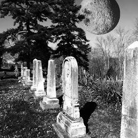 Haunting Moon  by Virginia Howerton - City,  Street & Park  Cemeteries