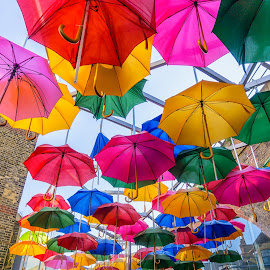 Umbrellas by George Johnson - Artistic Objects Other Objects (  )