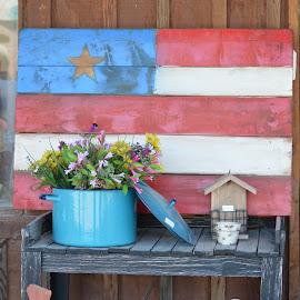 Americana by Heather Walton - Novices Only Objects & Still Life ( wooden flag, birdhouse, flea market, flowers, pot )