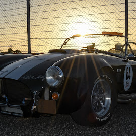 Shelby Cobra by José Borges - Transportation Automobiles ( badass, sportcar, sunset, shelby, cobra,  )