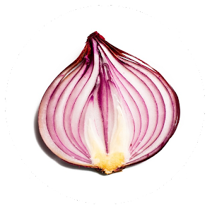 Onion Search Engine app for android