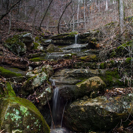 Spring in the Ozarks by Loren Holloway - Landscapes Forests ( water, arkansas., flowing water, waterfall, woodland, ozarks, relax, tranquil, relaxing, tranquility )