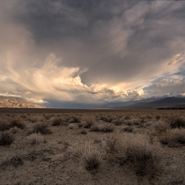 Fruition  by Michael Keel - Landscapes Travel ( #big pine #big pine ca. #cirrus #death valley #field #meadow #mountains #prairie #wide angle #wide sky #sierra storm #linticulous #bishop ca. )