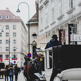 Moments in Austria by Daniel MV - City,  Street & Park  Street Scenes ( wien, beautiful, street, horse, viena, austria )