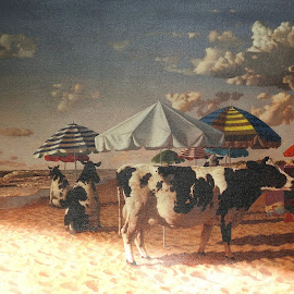 Cows on the beach by Bob Has - Painting All Painting ( parasol, beach, painting, cows )