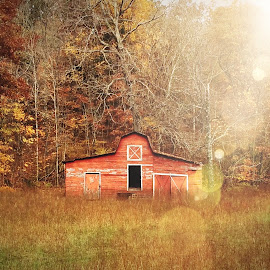 Autumn in the Country by Amanda  Castleman  - Instagram & Mobile iPhone ( barn, autumn, fall, rural, country )