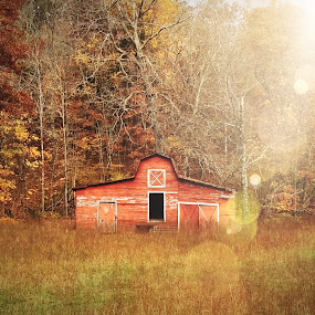 Autumn in the Country by Amanda  Castleman  - Instagram & Mobile iPhone ( barn, autumn, fall, rural, country,  )