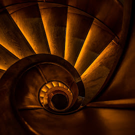 Stairs by Mario Horvat - Buildings & Architecture Architectural Detail ( spiral staircase, stairs, wood, iconic, staircase, dark, brovn, ljubljana, spiral, black )