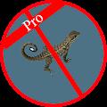 App Anti Lizard apk for kindle fire