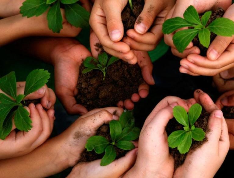 [INFOGRÁFICO] Dia mundial do meio ambiente