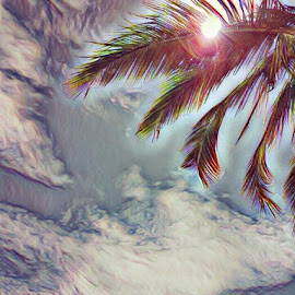 Clouds, sun and a palm tree by Hayley Moortele - Digital Art Places ( #vacation, #digitalart, #phototodrawing, #sunnydays, #sun, #palmtrees )