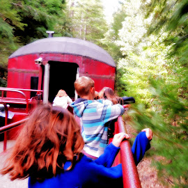 Touching the Tree Boughs by Becky Luschei - Transportation Trains ( touch, tree, reaching, touching, pass by, boughs, skunk train, evergreen )