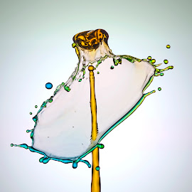 WhoOops... by Aditya Permana - Abstract Water Drops & Splashes