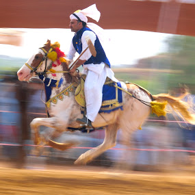 Tent Pegging by Tahir Sultan - Sports & Fitness Other Sports ( horse, nikon, sports, panshots, pakistan, action, tentpegging, islamabad )