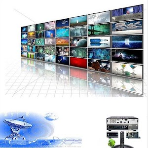 REMOTE UNIVERSAL DISH/DTH TV