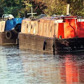 Narrowboats by Ron Adams - Transportation Other ( water, narrowboats, red, reflections, canala )