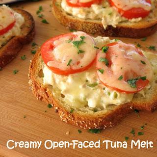 Healthy Tuna Melt Sandwich Recipes