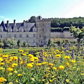 Villandry castel III by Ciprian Apetrei - Buildings & Architecture Public & Historical ( building, park, france, castle, architecture )