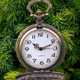 10 - 10 by Darrell Evans - Artistic Objects Other Objects ( face, pocket watch, time, minutes, seconds, numbers, clock, hands, watch, hours, winder )