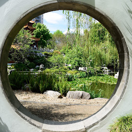 Chinese Gardens by Luke Rickinson - City,  Street & Park  City Parks ( water, plants, trees, gardens, chinese )